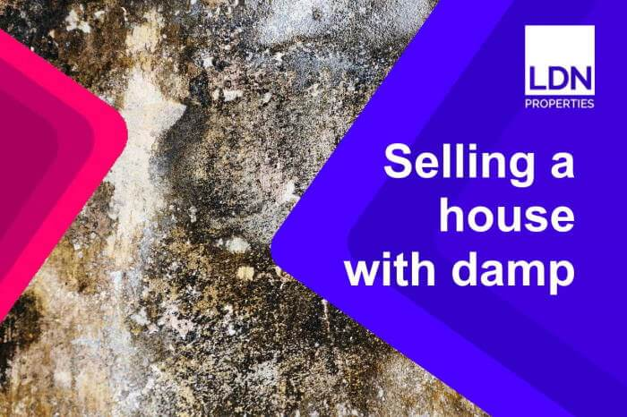 Sell house with damp