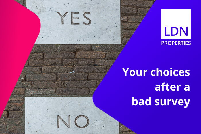 Sale choices after a bad house survey